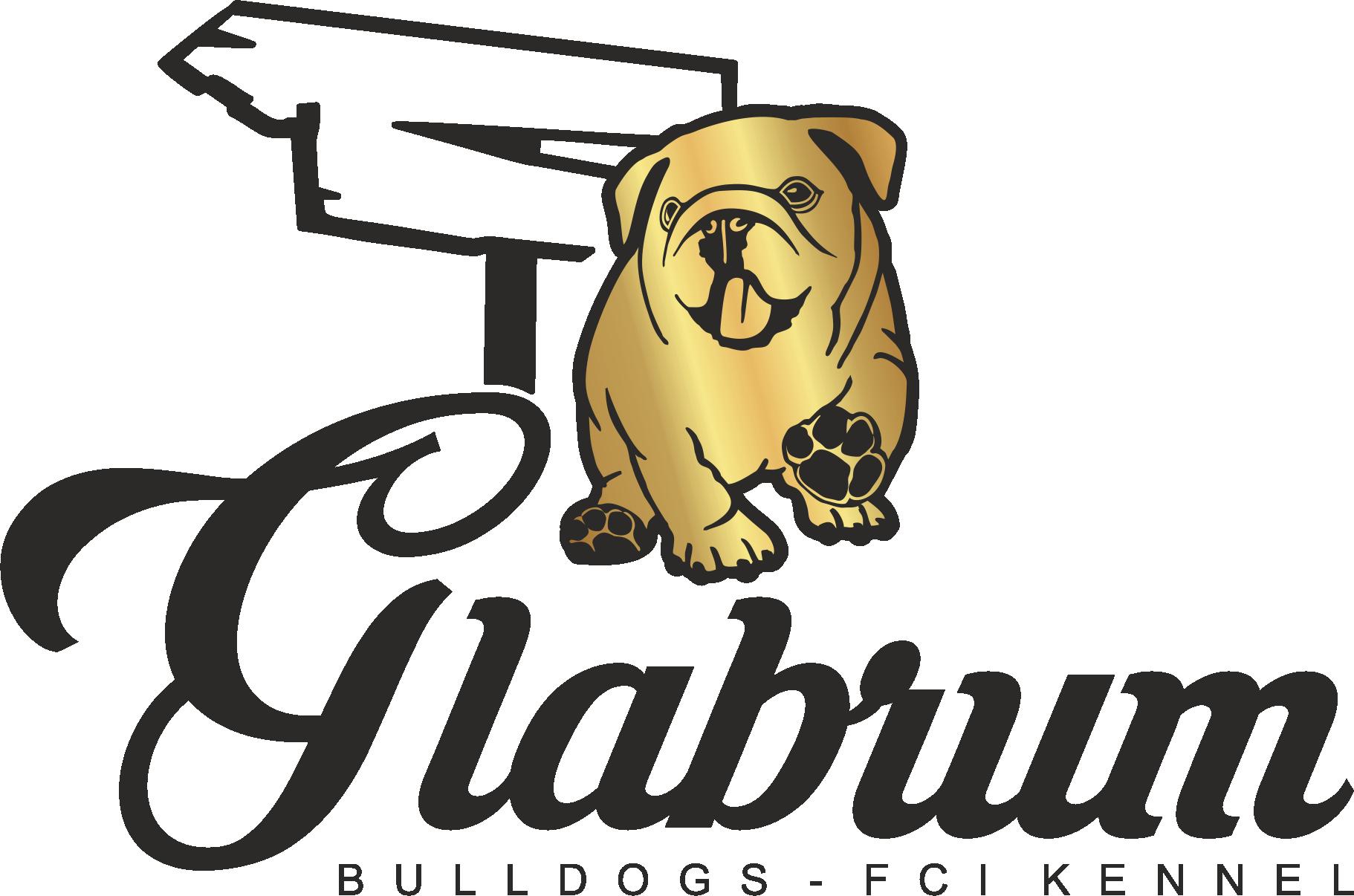Hodowla Buldoga Angielskiego GLABRUM